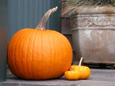 pumpkin-07.jpg
