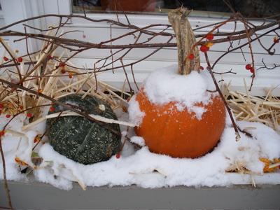 snowy-pumpkin.jpg